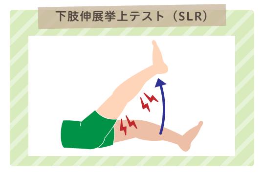 SLRテスト